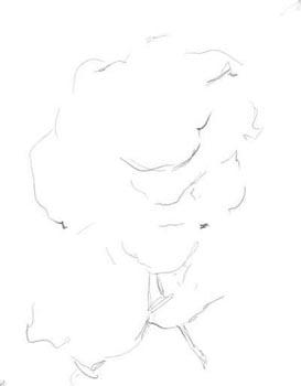 Pencil_Drawing_1.jpg